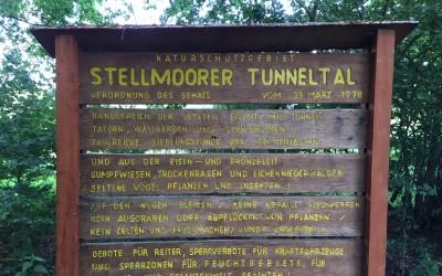 Stellmoorer Tunneltal und Höltigbaum: Pflege- und Entwicklungsplan liegt vor
