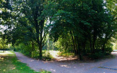 Endlich: Waldspielplatz am Hallen- und Freibad kommt