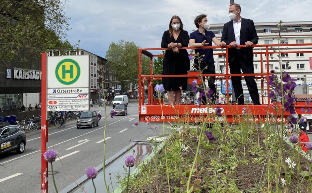 Mehr Natur in der Stadt: Pilotprojekt für begrünte Fahrgastunterstände